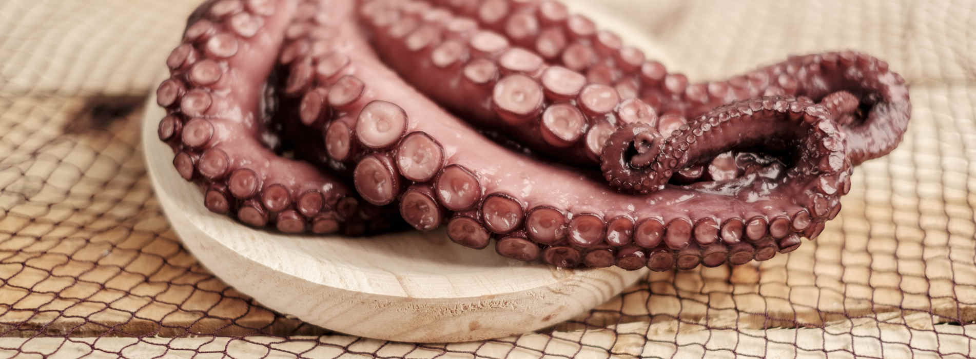 Extra quality Salanort octopus. Top quality Atlantic octopus cooked at low temperature and vacuum-packed. Ready to eat.